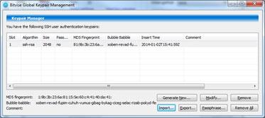 Bitvise Key Pair